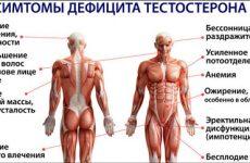 Как увеличить тестостерон в организме мужчины естественными и народными средствами