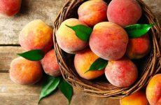 Как использовать полезные свойства персикового масла при заболеваниях горла, носа и в косметологии