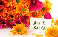 Красивые поздравления с днем рождения коллеге своими словами, в стихах и прозе
