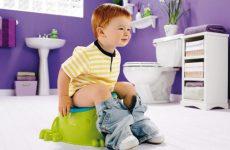 Трусики и другие способы того, как быстро и правильно приучить ребенка к горшку
