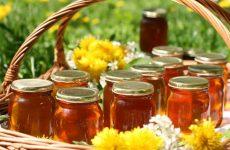 Как можно проверить качество меда в домашних условиях: натуральный или нет