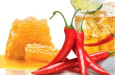 Как применять водку с перцем и другими ингредиентами для лечения простуды