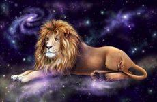 Характеристика мужчины и женщины льва, совместимость с другими знаками зодиака